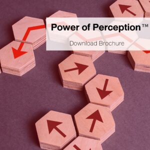 Power of Perception